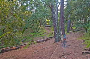 Hole 17, 'The Gravity Hole', at DeLaveaga. Note how the hole plays downhill as well as sloping right-to-left (looking back toward the tee). Photo by John Hernlund.