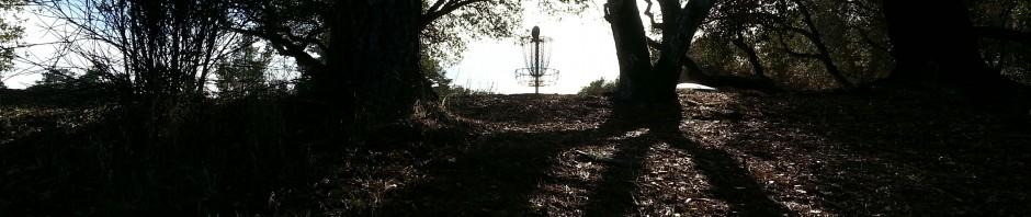 Disc Golf Instruction School Of Disc Golf