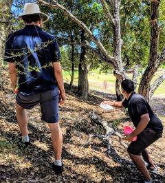 Taking careful aim between the trees.